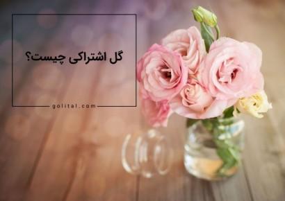 فروشگاه آنلاین گل و گیاه گلیتال | اشتراک گل چیست؟