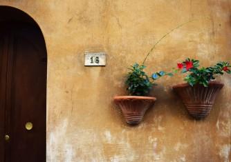 فروشگاه آنلاین گل و گیاه گلیتال | گلدانهای تصفیه کننده هوا