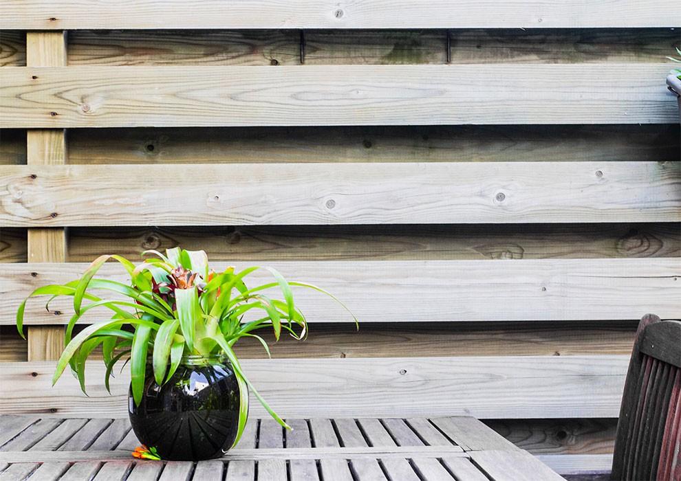 گلیتال - مناسبترین گل برای کافه
