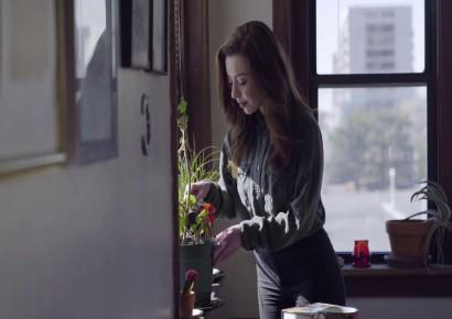 فروشگاه آنلاین گل و گیاه گلیتال | چه گلدان آپارتمانی ای بخریم؟