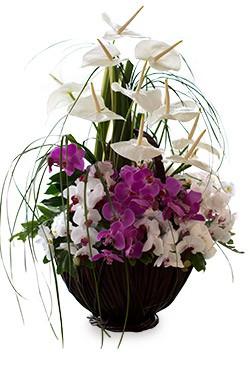 خرید سبد گل شالیز