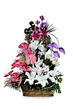 خرید سبد گل شایلین
