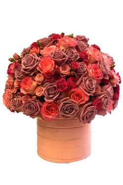 خرید باکس گل رز تانیا