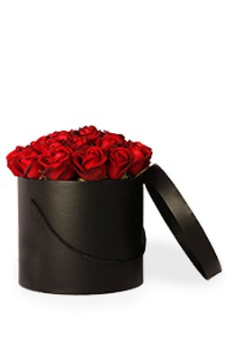 خرید باکس گل دوروتی-بزرگ